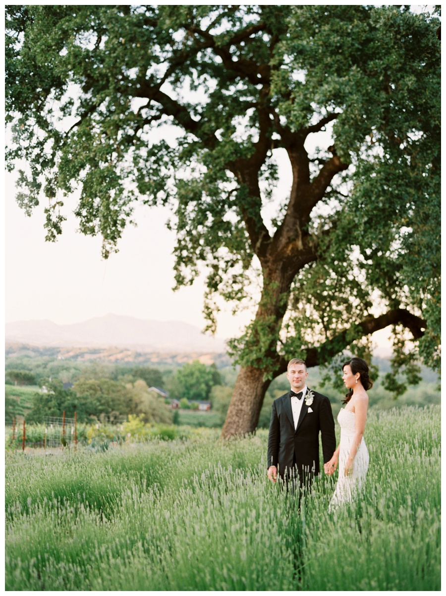 Arista Winery Wedding